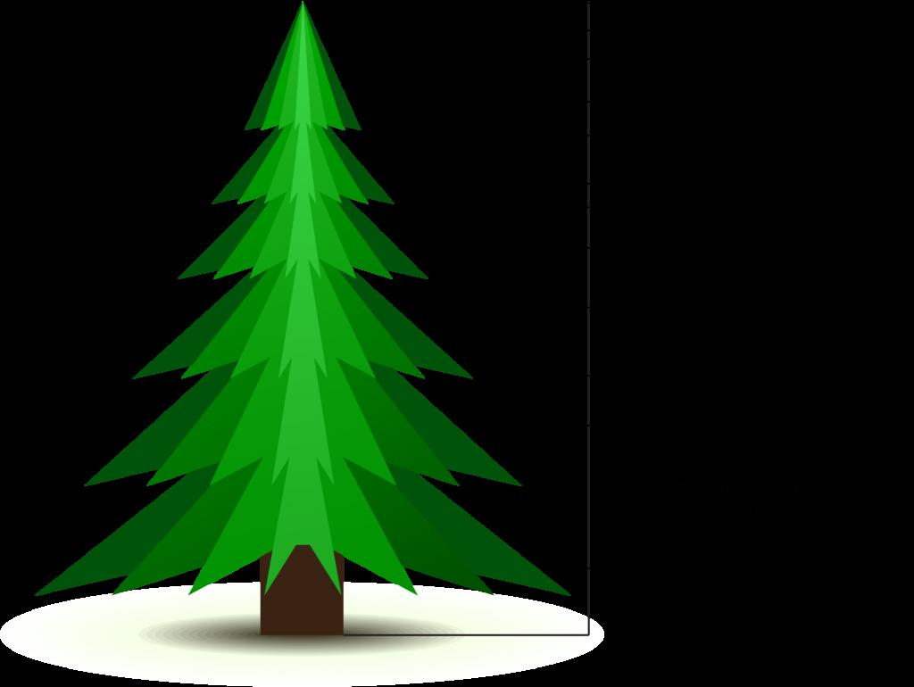 weihnachtsbäume_preisen